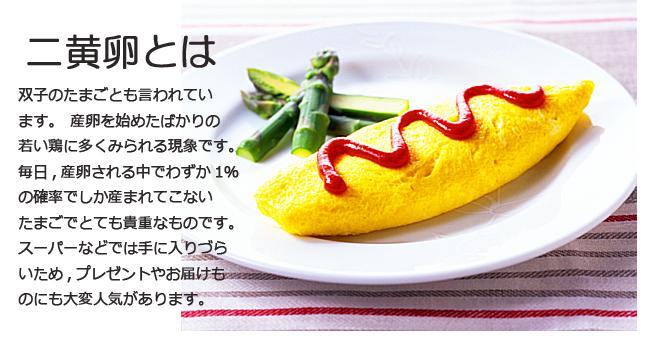 二黄卵 20個詰め | 養鶏農場の産直たまご通販ショップ 愛たまご